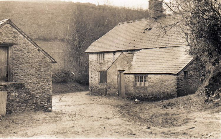 Riscombe Farm photo postcard 1911